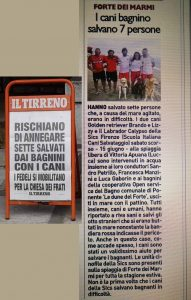 CANI BAGNINO SALVANO 7 PERSONE